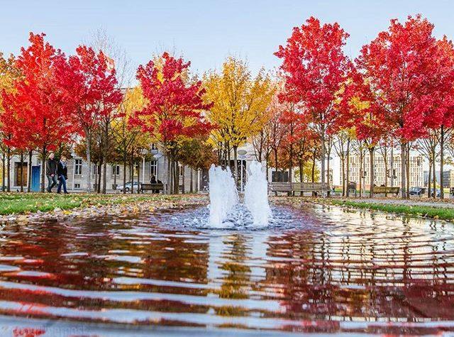 Le foto di Berlino in autunno
