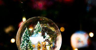 Christmas Garden Berlin: la magia del Natale