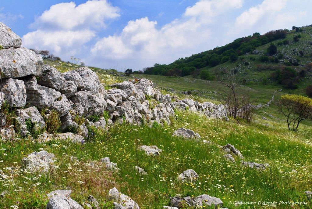 Mura megalitiche sul Montauro, foto di G. D'Arezo