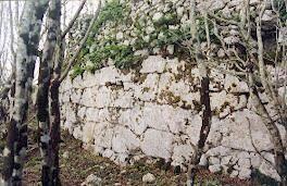 L 'acropoli sannitica di Monte Cavuto