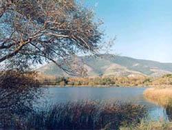 Riserva Lago di Falciano