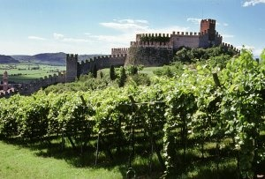soave_castello_vigneti