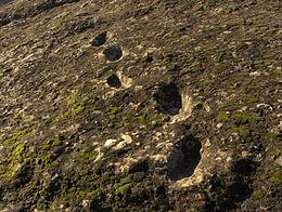 Orme nella roccia