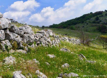 Alla ricerca della citta' fantasma dei Sanniti nel territorio di Vairano Patenora