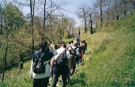 I sentieri del castagno nel Parco Regionale di Roccamonfina