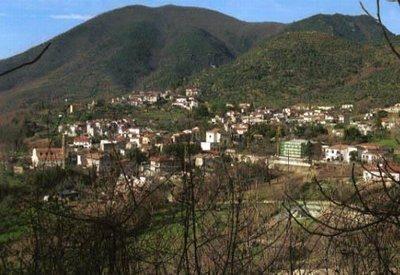 Raviscanina