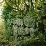 Mure megalitiche Orto della Regina