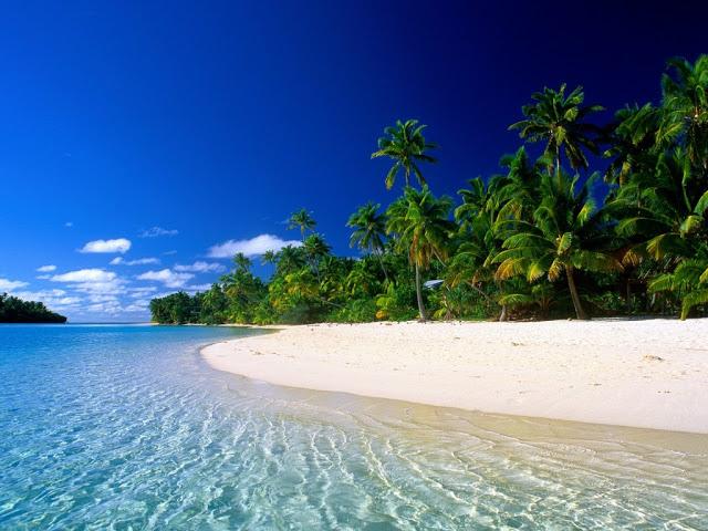 una spiaggia brasiliana