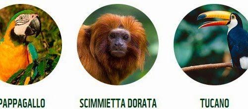 Tutela della Foresta Amazonica: il Progetto Triangolo Verde del WWF