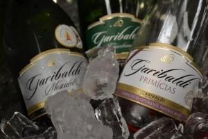 Il Vino in Brasile: La capitale brasiliana dello spumante si chiama Garibaldi
