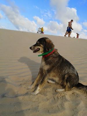 L'Amore sulla duna di Jeri