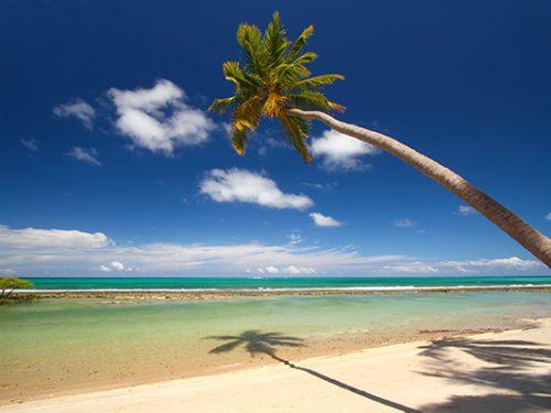 Olinda low cost: volo in Brasile e 14 giorni in B&B a 800€