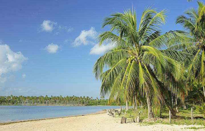 Praia de Camaragibe - Alagoas