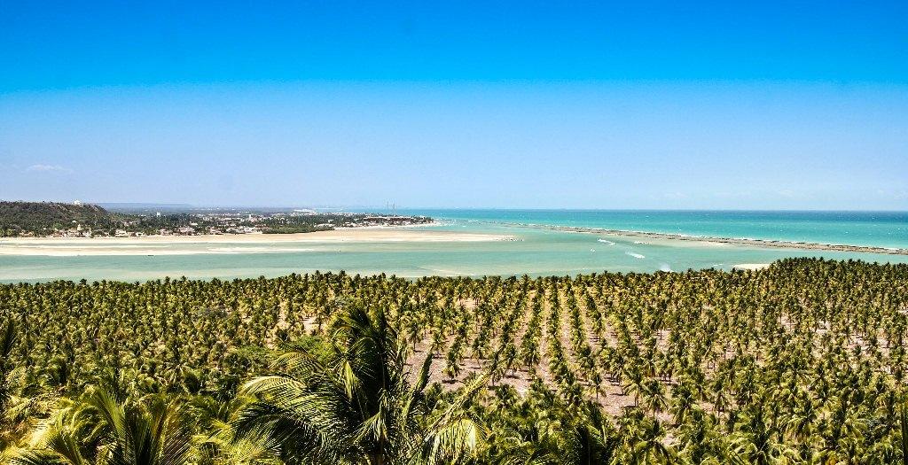 Praia do Gunga - Alagoas