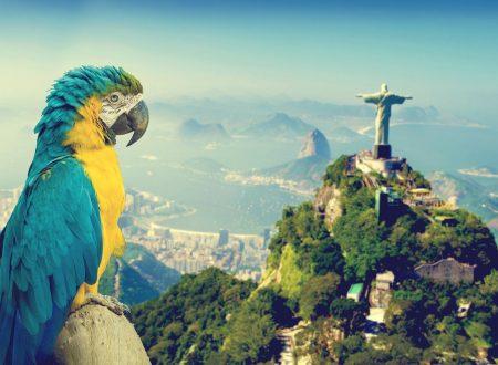 LETTERE dal Brasile
