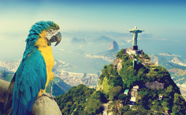 Verso le Olimpiadi di Rio de Janeiro