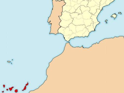 La protesta dei canari residenti in Spagna