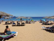 L'incredibile Playa Las Teresitas: paragonatela con le spiagge italiane…