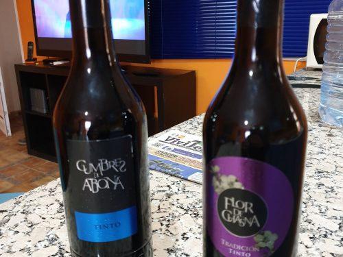 Due ottimi vini prodotti a Tenerife nelle terre dell'Abona