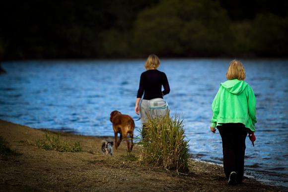 Una passeggiata col proprio cane sulla riva (foto Paolo Bergomi)