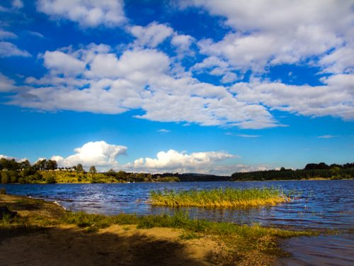 Gita in giornata  a Blessington Lakes