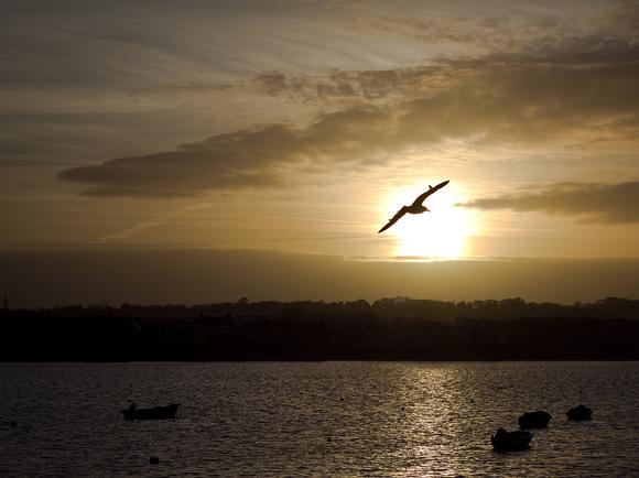 un protagonista al tramonto