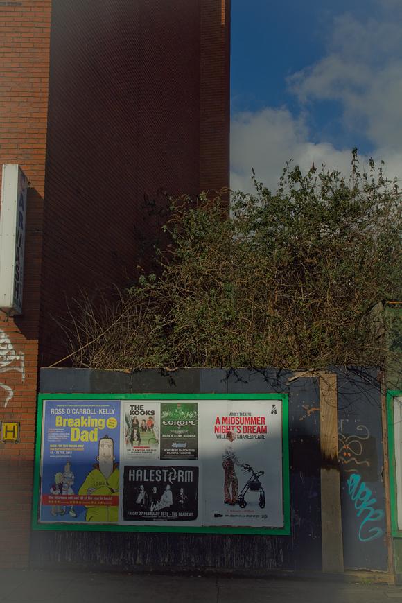 Ruderi e relitti del passato nel centro di Dublino