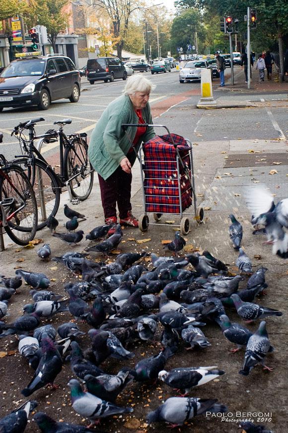 Dublino, donna e piccioni