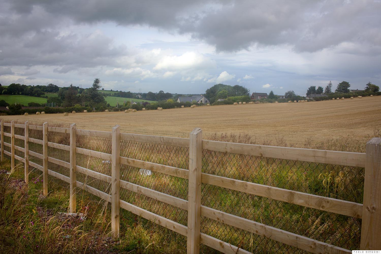 A dieci minuti di auto dal centro di Cork (1 ora e mezzo a piedi) si trovano campi e colline che fanno sognare...