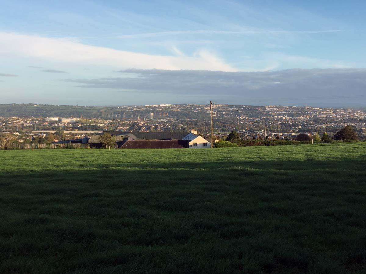 Matthew Hill, Panorama