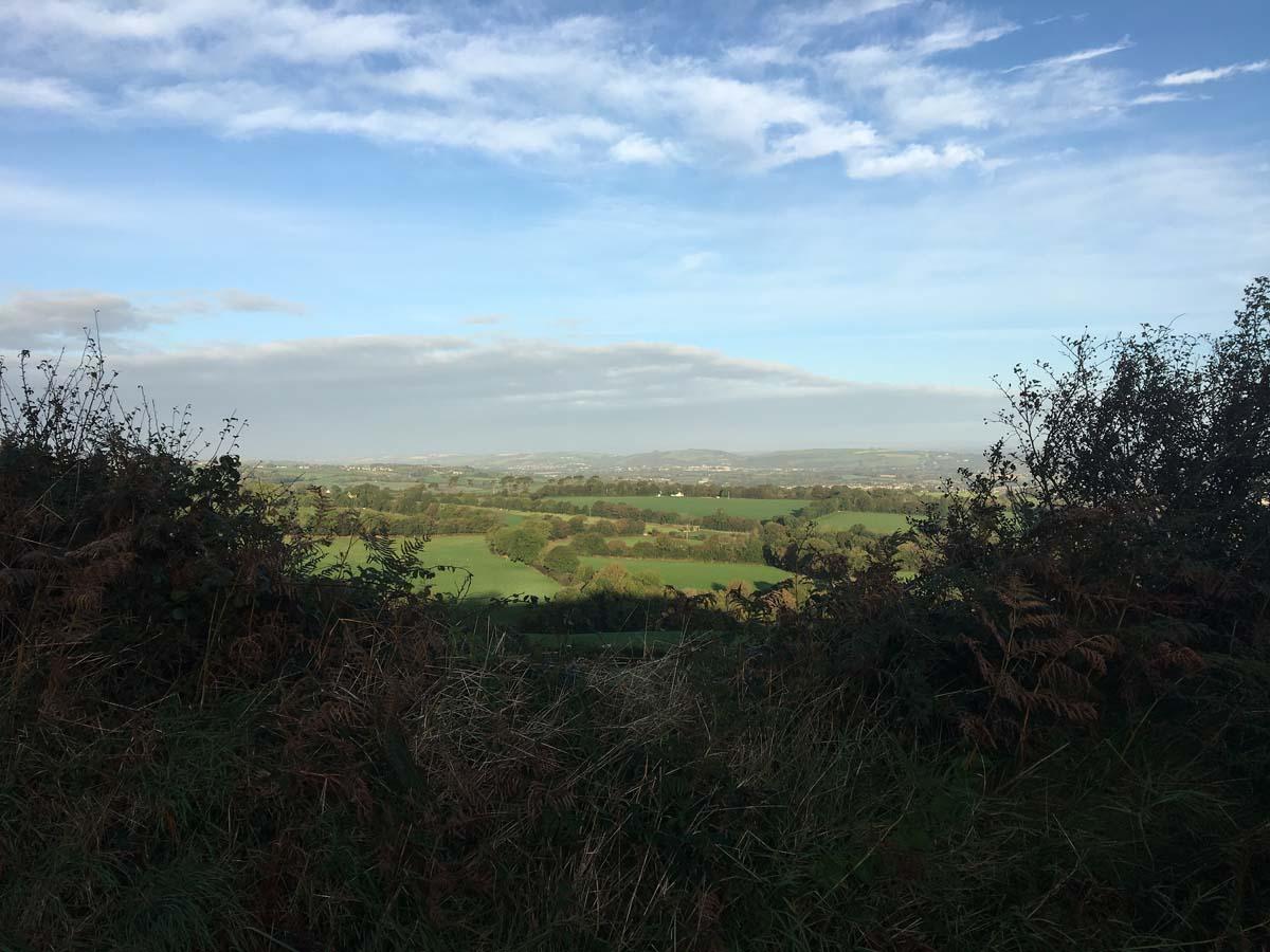 Panorama, Matthew Hill