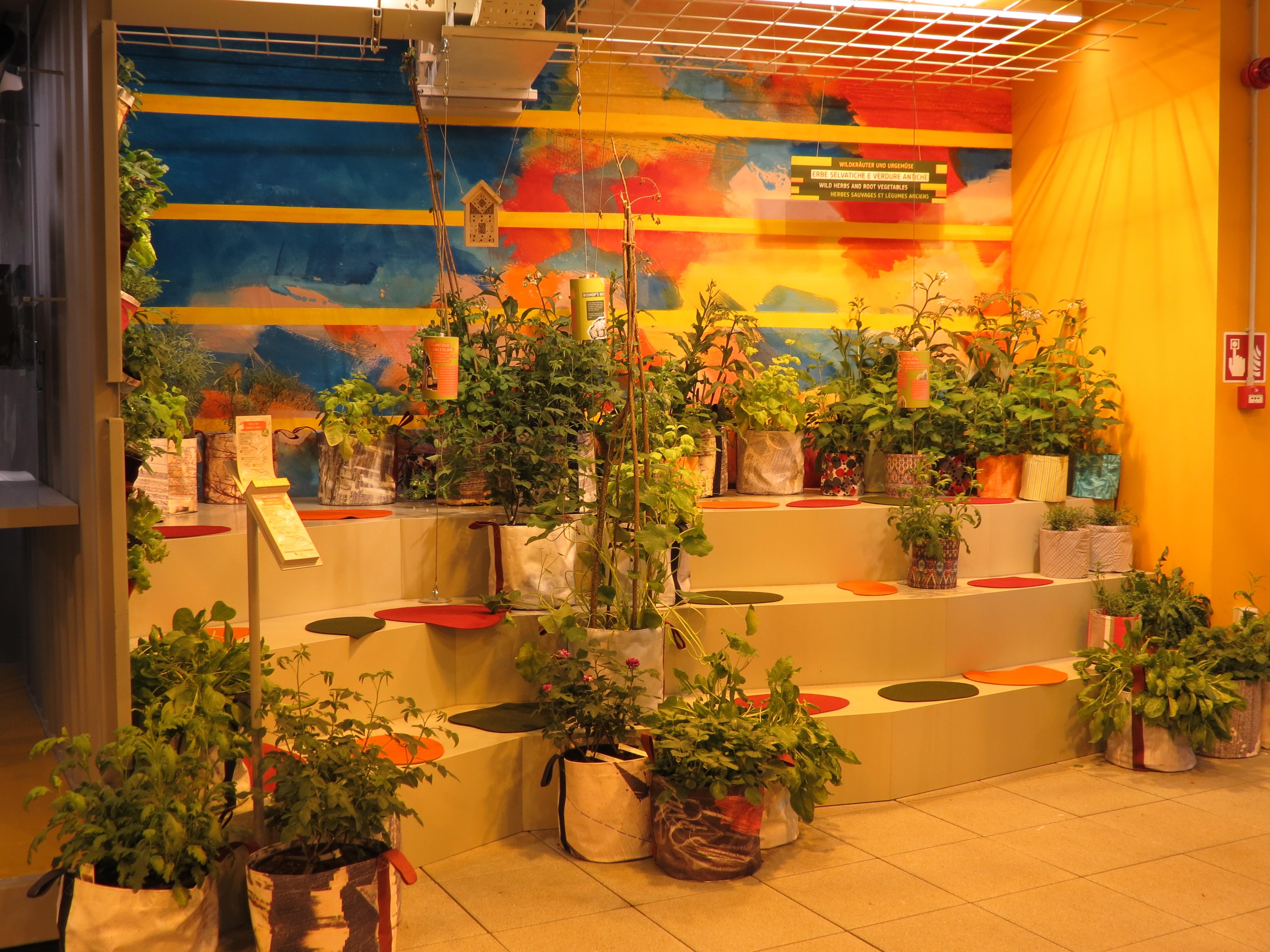 Guida agli orti della expo expo heritage for Vasi erba