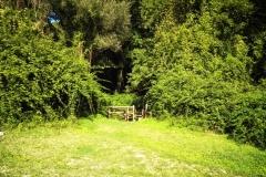 entrata sentiero eremo di poggio conte