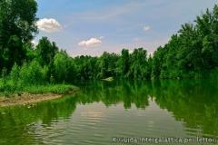 Il fiume Reno a pochi passi da Bologna