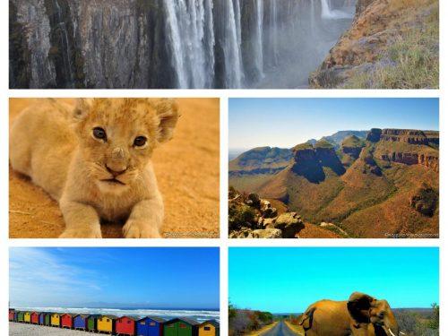 SUDAFRICA E CASCATE VITTORIA: il nostro itinerario di due settimane