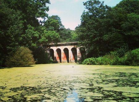 I segreti di Hampstead Heath: the Ponds