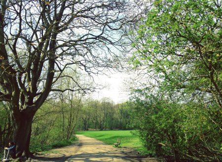 I segreti di Hampstead Heath: il parco più bello