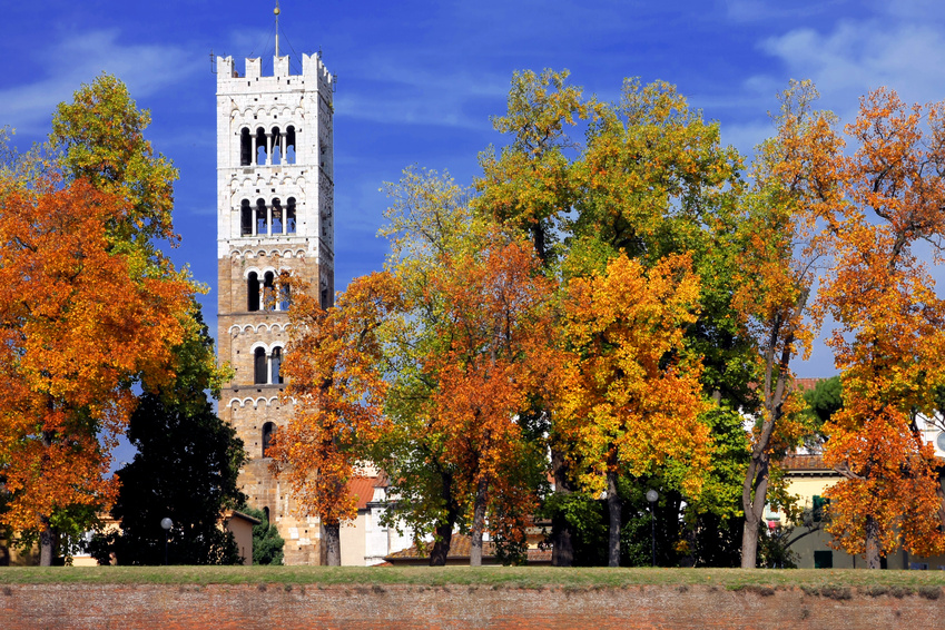 A bell tower of Lucca