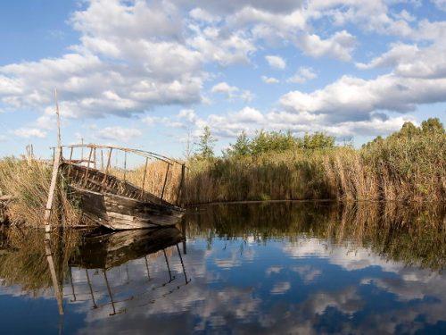 Torre del Lago: tra storia e natura.