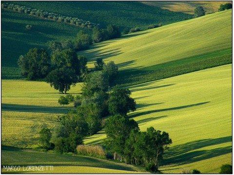 Le Marche: molto più di 31 sfumature di verde.