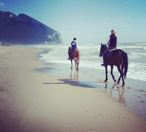 Escursioni a cavallo al Circeo: dove, come e prezzi