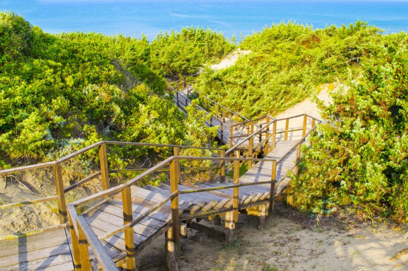 Spiagge libere a Sabaudia
