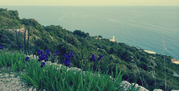 trekking circeo sentiero panoramico acropoli faro