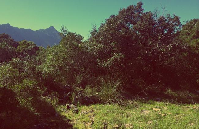 trekking circeo guardia orlando