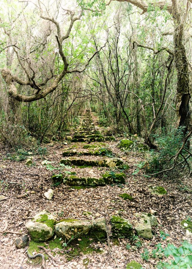 trekking circeo sentiero vecciaro