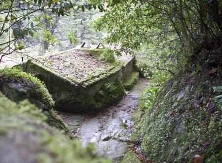 Una gita fuori porta nelle meraviglie di Sintra