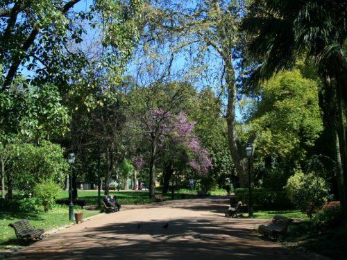 Cittá che vai… giardini e parchi che trovi. Oasi nel cuore di Lisbona: Jardim da Estrela