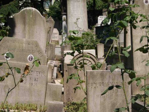 I cimiteri di Istanbul, la valle degli usignoli