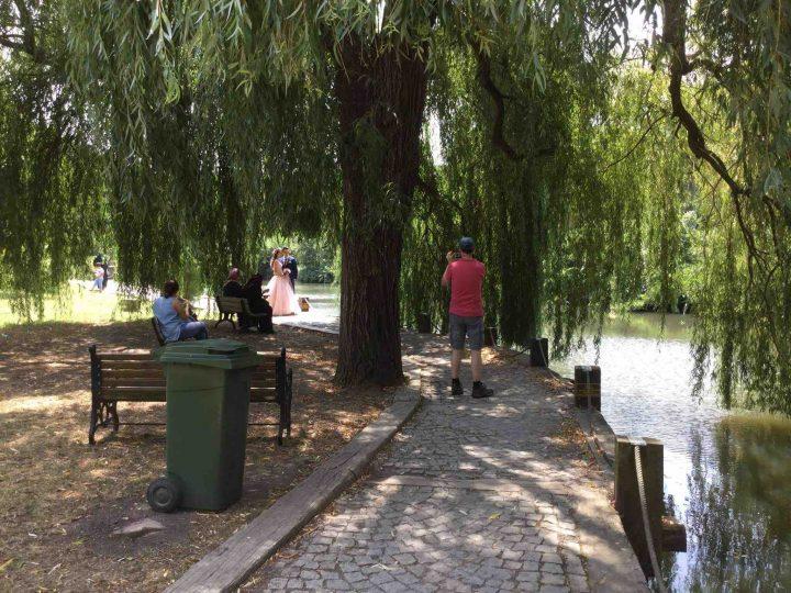 Arboretum00
