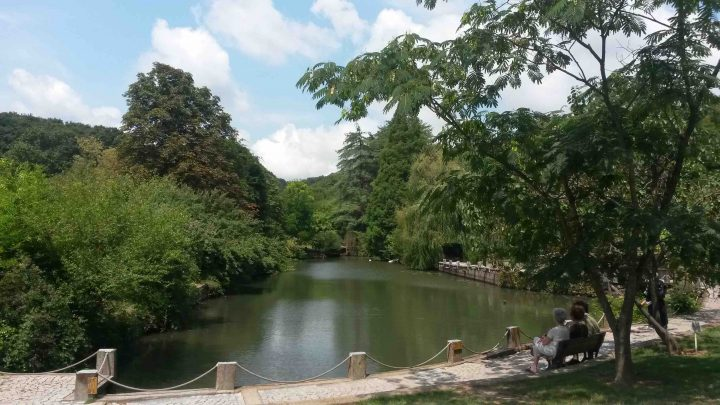 Arboretum01